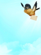 Vogel mit Karte